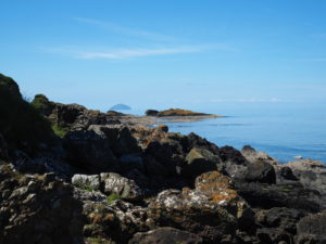 Ailsa Craig from Dunure